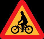 motionslopp cykel regler
